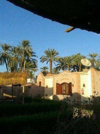 Al Baeirat Hotel : Blick vom zimmereigenem Garten