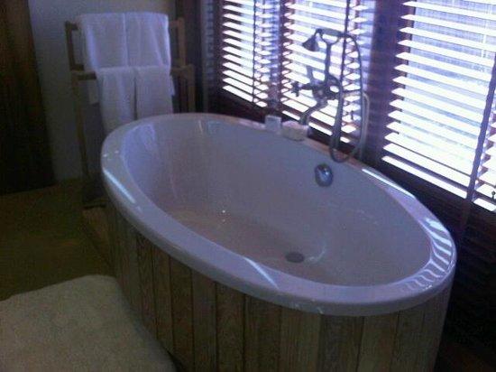 Anantara Sir Bani Yas Island Al Yamm Villa Resort: Bath with windows opening to outside