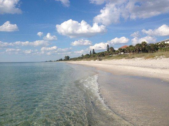 Pearl Beach Inn: Strandbereich