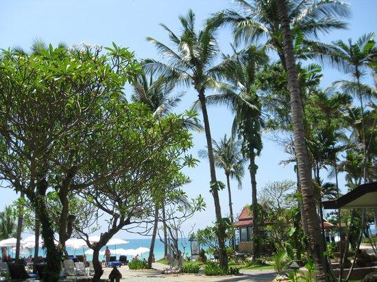 Chaweng Buri Resort: View from villa