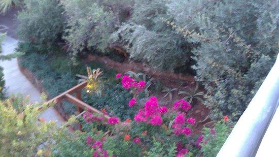 Elounda Gulf Villas & Suites : Garden