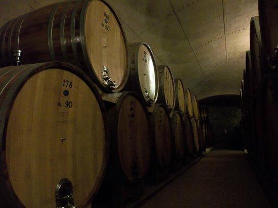 Castello Banfi - Il Borgo: Wine barrela