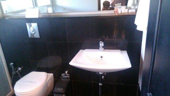 The Silver Tips : bathroom