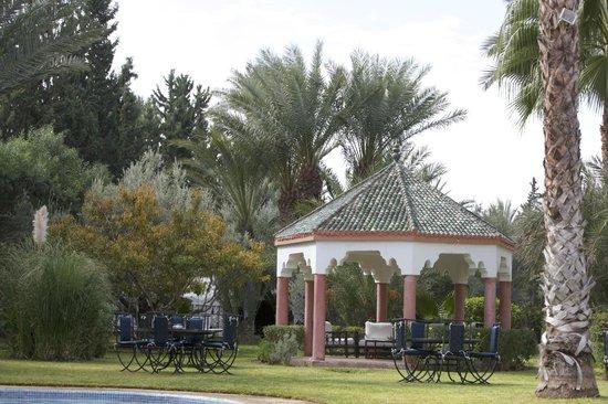 Villa des Trois Golfs: Les palmiers