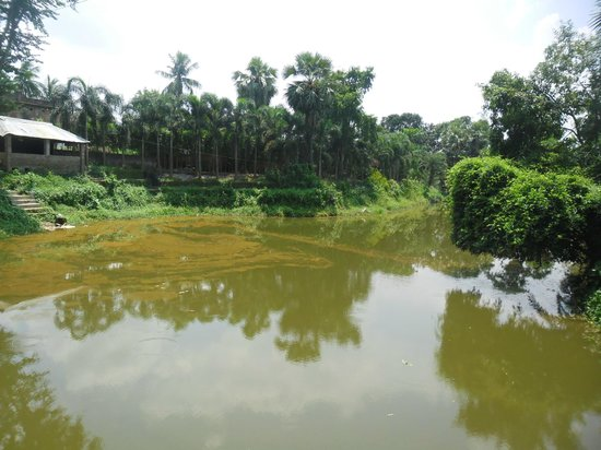 Sabujban Resort