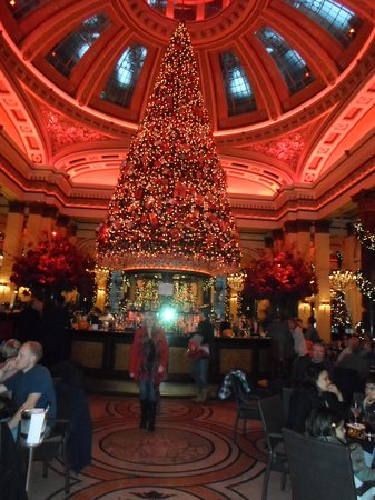 The Dome: xmas tree in the restaurant