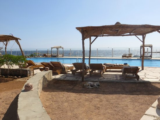 Canyon Estate Dahab Beach Hotel Residence: the pool area