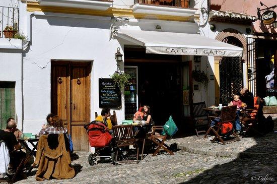 Cafe 4 Gatos: Exterior / Exterior view