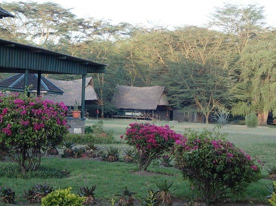Lake Naivasha Resort : Tents