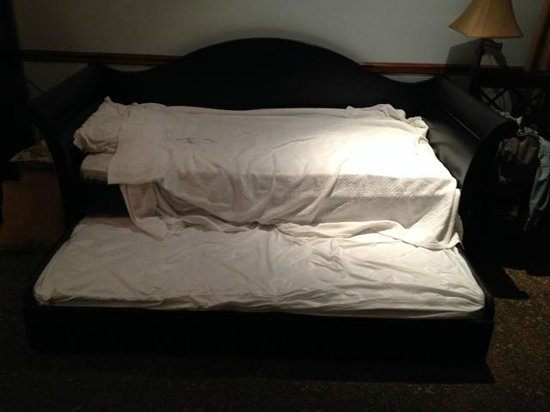 Blue Moon Hotel: couch with pull out trundle bed on floor