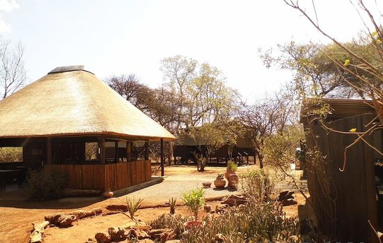 Mosetlha Bush Camp & Eco Lodge : The center of the camp