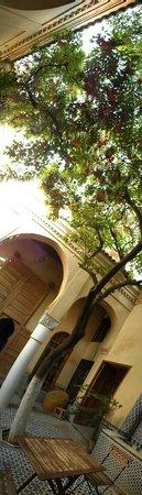 Riad La maison d'a cote: Inside the Riad