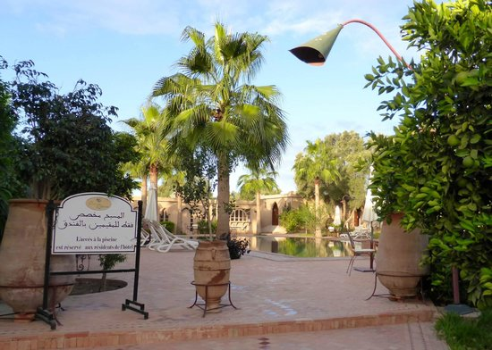 Hotel Dar Zitoune: Pool only for guests!
