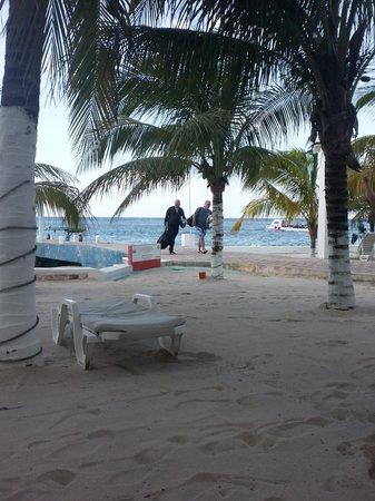 Hotel Cozumel and Resort: Beach/dock
