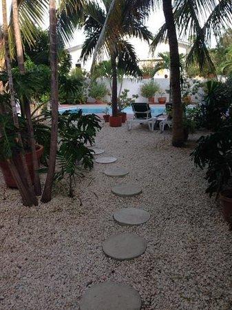 B&B Sombre di Kabana: uitzicht vanuit mijn appartement