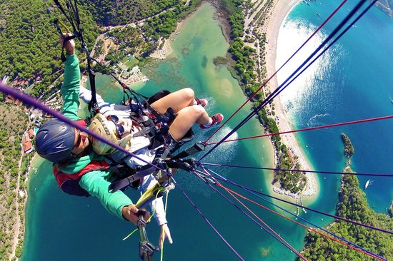 Reaction Paragliding: Flying like a bird with Reaction