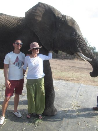 Adventures with Elephants : Mom and I with one of the elephants