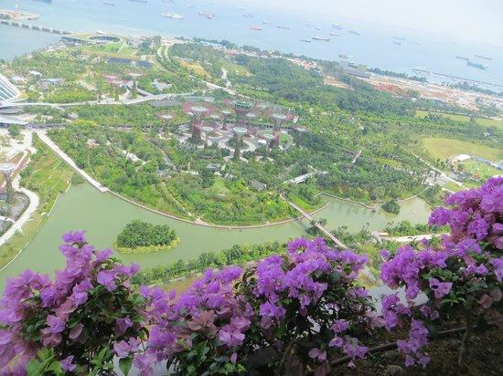 Marina Bay Sands Holiday Reviews Hotels Resorts And   Holidays OO
