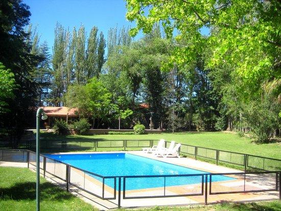 Lujan de Cuyo B&B : El jardín con la piscina cercada
