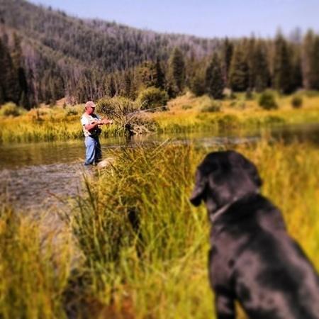 Flat Creek Ranch: Flyfishing with Rio