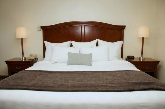 Holiday Hill Inn & Suites: King Room