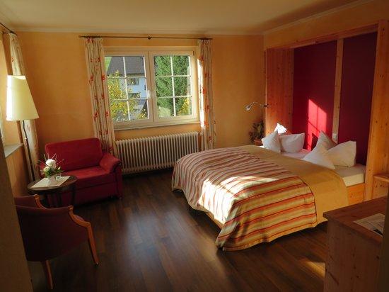 Vitalhotel Grüner Baum: la chambre