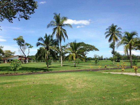 Puerto Barillas Marina & Lodge: Caballeriza