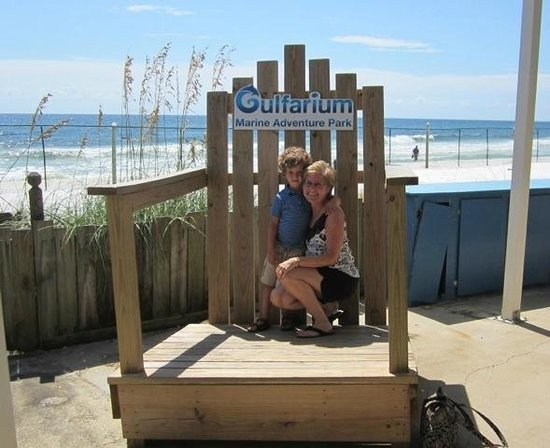 Gulfarium Marine Adventure Park: Gulfarium photo op