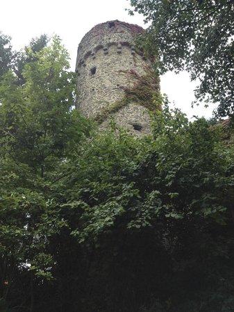 Best Western Premier Hotel Villa Stokkum: Steinheim town wall