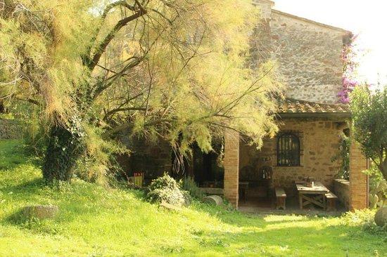 Pieve di Caminino Historic Farm: Caminino
