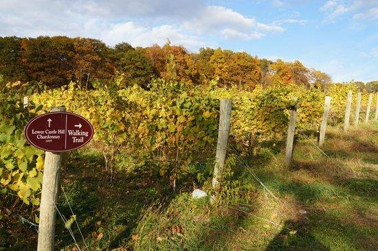 Millbrook Vineyards & Winery: Lower Castle