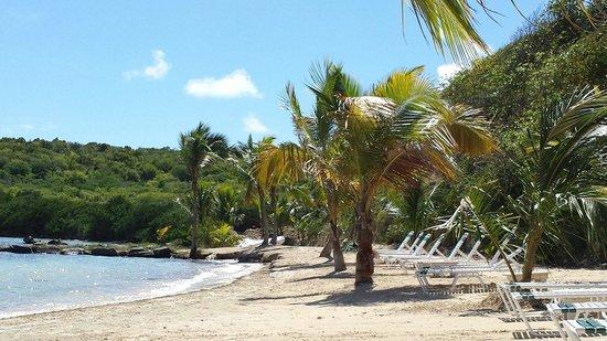 Nonsuch Bay Resort: :)