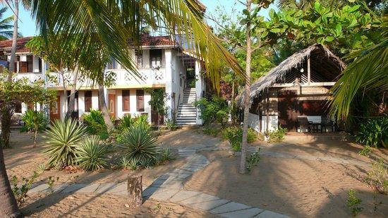 Stardust Beach Hotel : Hauptbau (Zimmer) mit Bungalow (ohne WW)