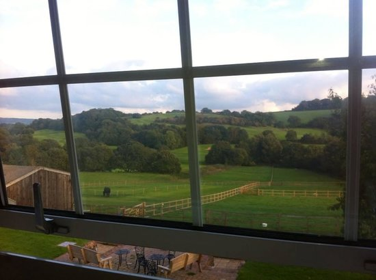 Fulfords Farm: View from are room