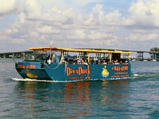 Divaduck Amphibious Tours West Palm Beach Fl