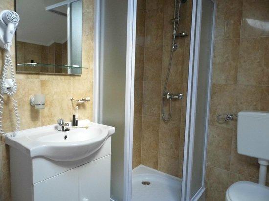 Villa Voinic : Lovely modern bathroom