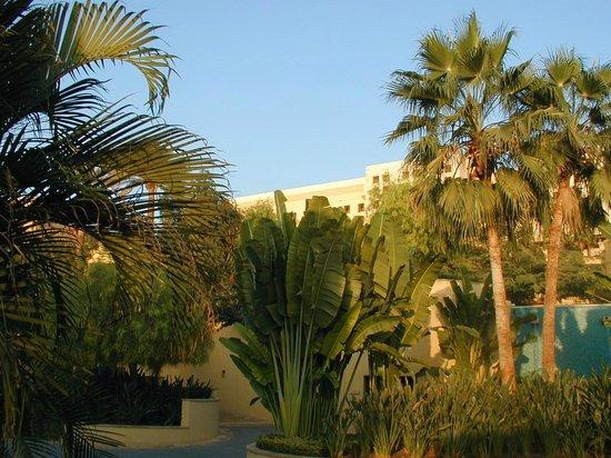 Kempinski Hotel Ishtar Dead Sea: территория