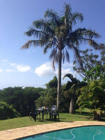 Little Eden St Lucia: Piscine