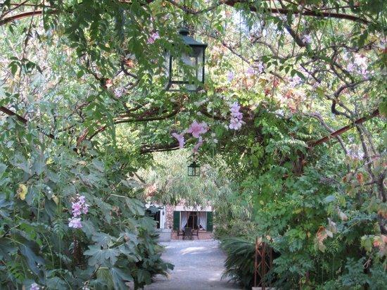 Finca Ca's Sant: Ein wunderschöner Garten