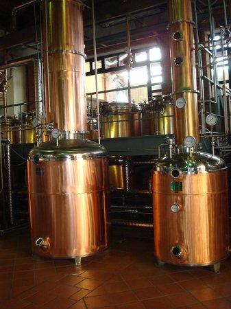 Distillerie Berta: Blick in die Produktionsstätte
