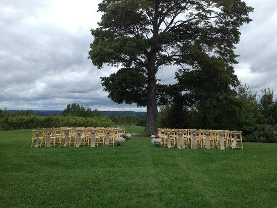 Ciccone Vineyard and Winery: Wedding at Ciccone