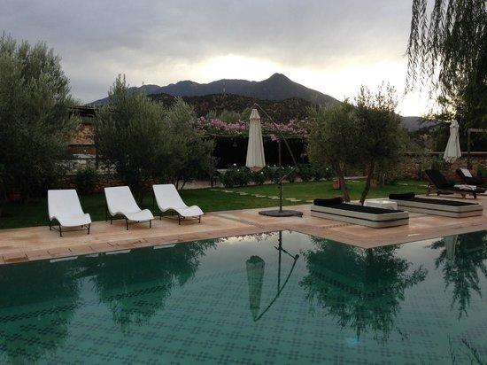Domaine Malika: Swimming pool