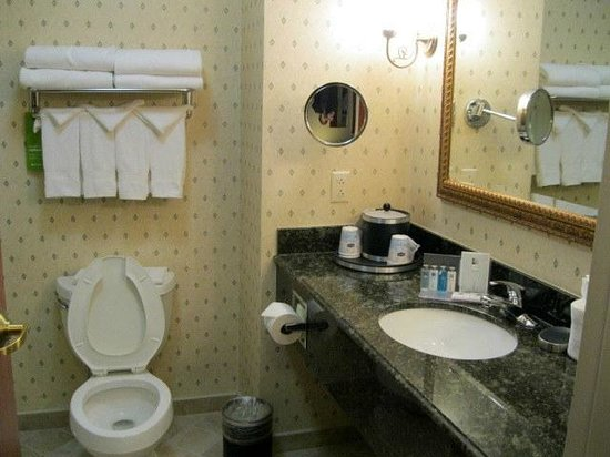Hampton Inn & Suites Rockville Centre: Bathroom
