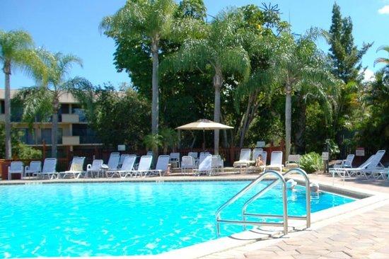 Park Shore Resort: Pool