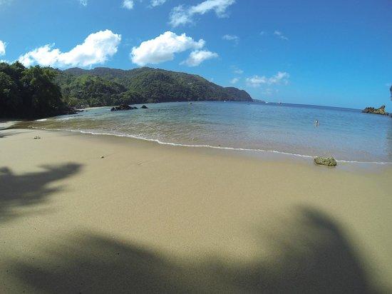 "Blue Mango: Castara Beach ""Little Bay"""