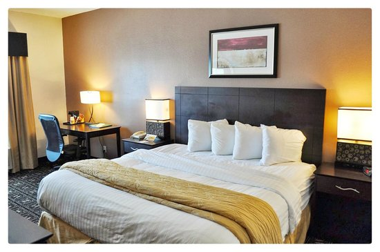 Quality Inn Brooklyn Center : Room with king size bed and sofa sleeper
