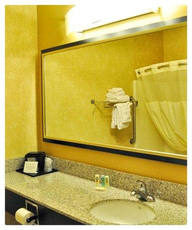Quality Inn Brooklyn Center: Bathroom