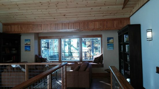 The Grand Idyllwild Lodge: View from the Library on the 3rd Floor ;o)