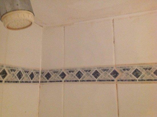 BEST WESTERN Birmingham Walsall Barons Court Hotel: Bathroom