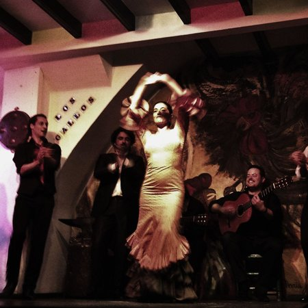 Tablao Flamenco Los Gallos: Best dancer!